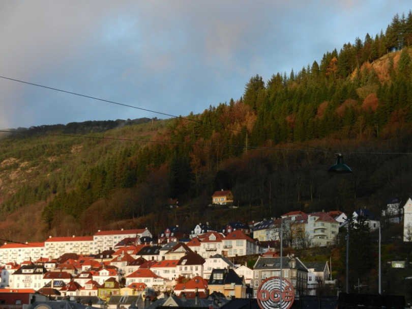 case albe in Bergen